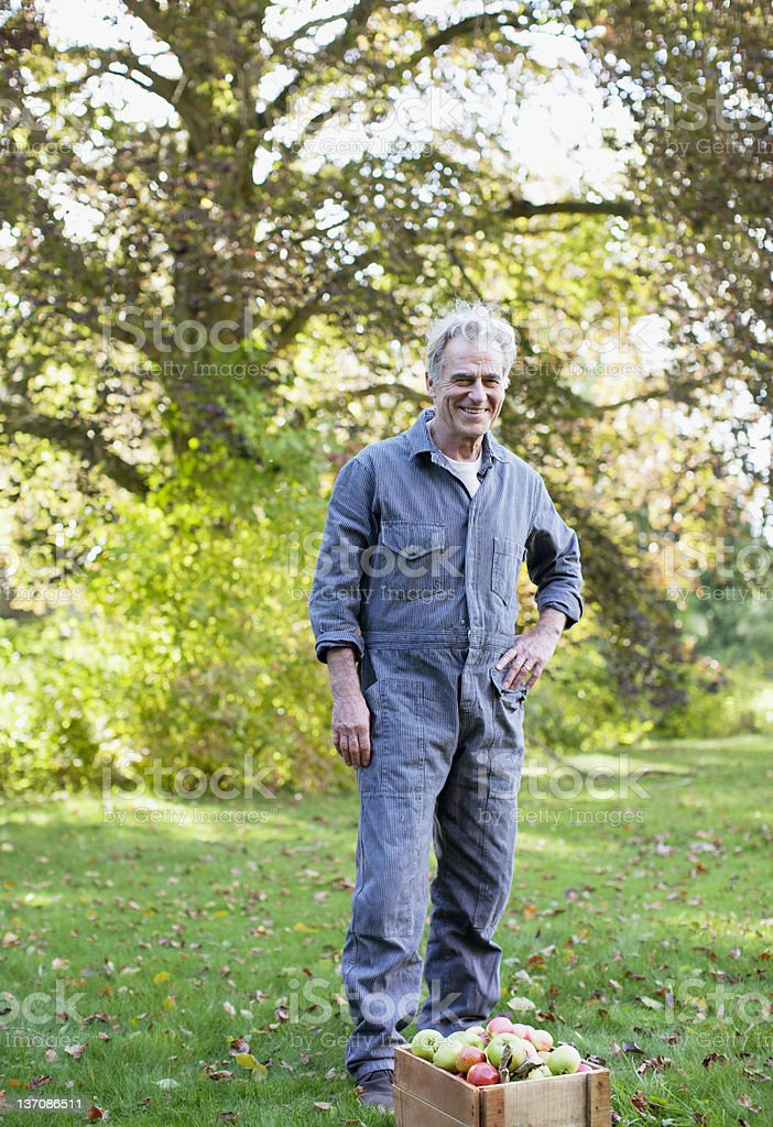 Portrait of smiling senior man wearing coveralls in apple orchard royalty-free stock photo
