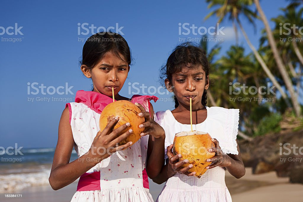 Portrait of Sri Lankan young girls with coconut royalty-free stock photo