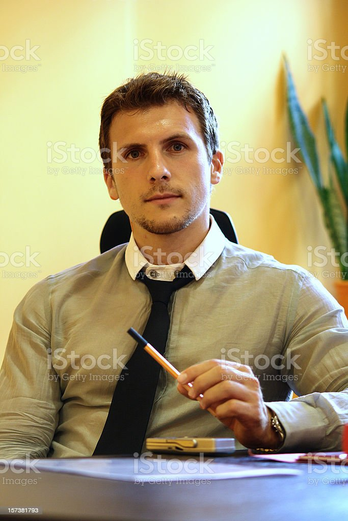 Portrait of the business man royalty-free stock photo