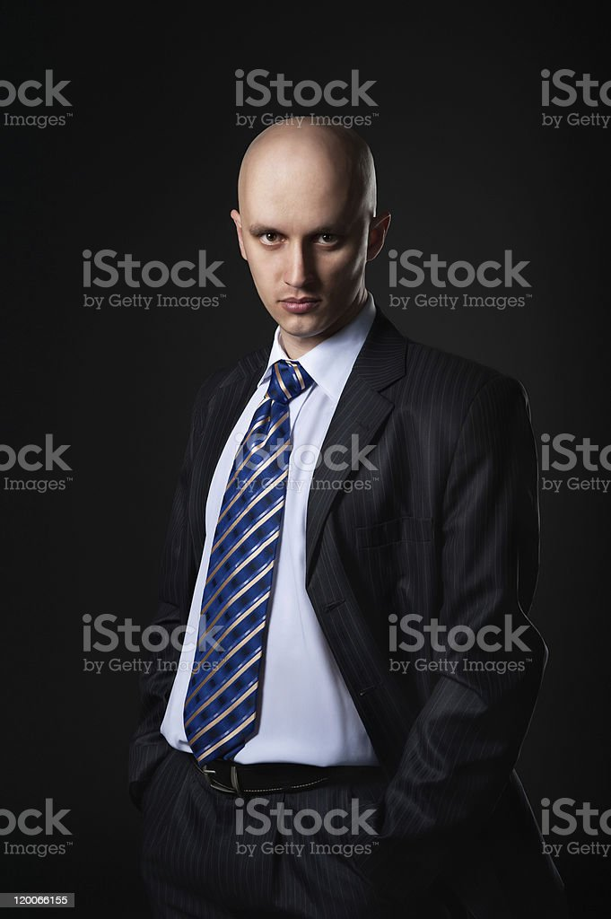Portrait of the businessman royalty-free stock photo