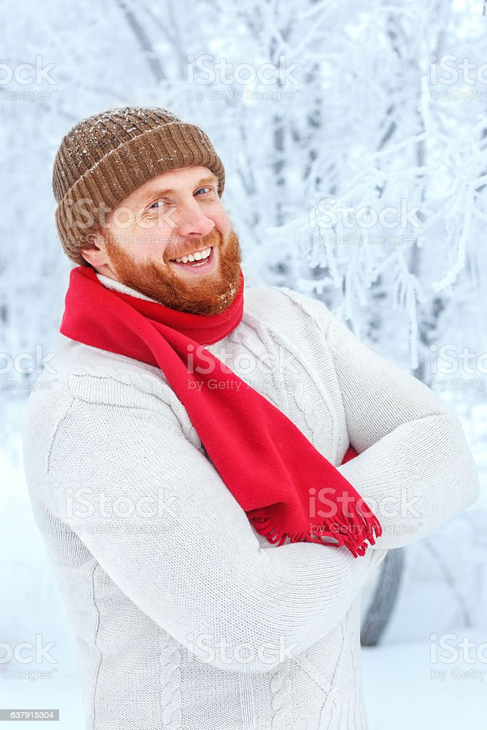 portrait of the redhead bearded man stock photo