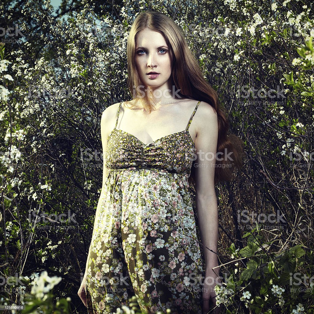 Portrait of the romantic woman in a summer garden royalty-free stock photo