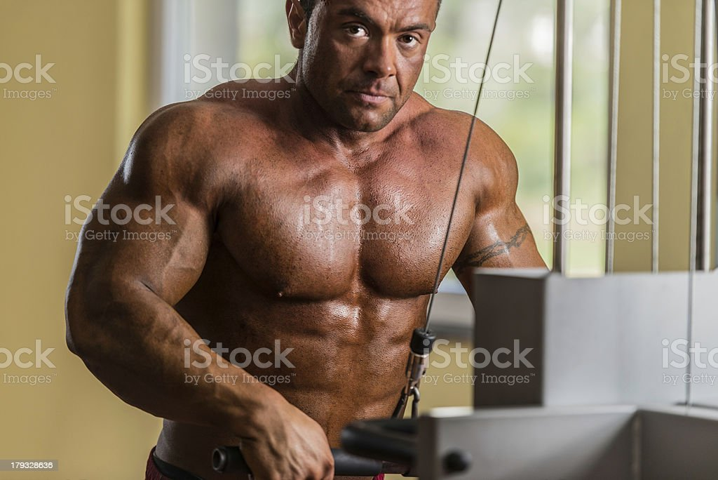 portrait of the shirtless bodybuilder royalty-free stock photo