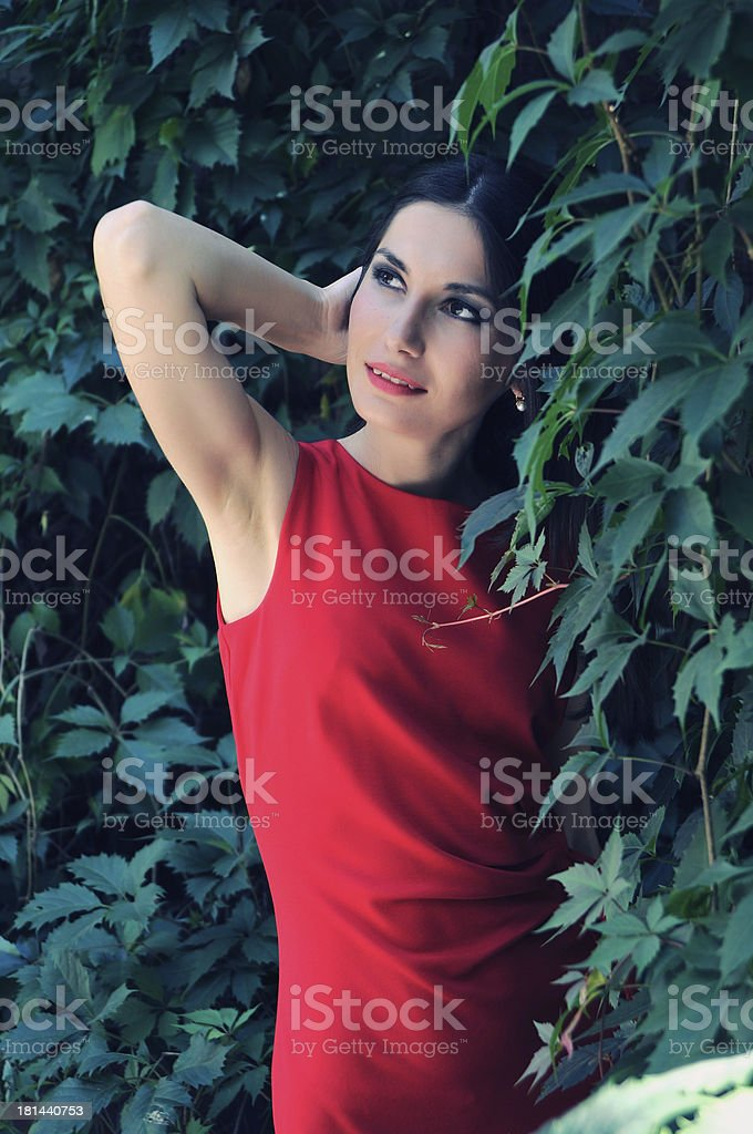 Portrait of the woman in a red dress royalty-free stock photo