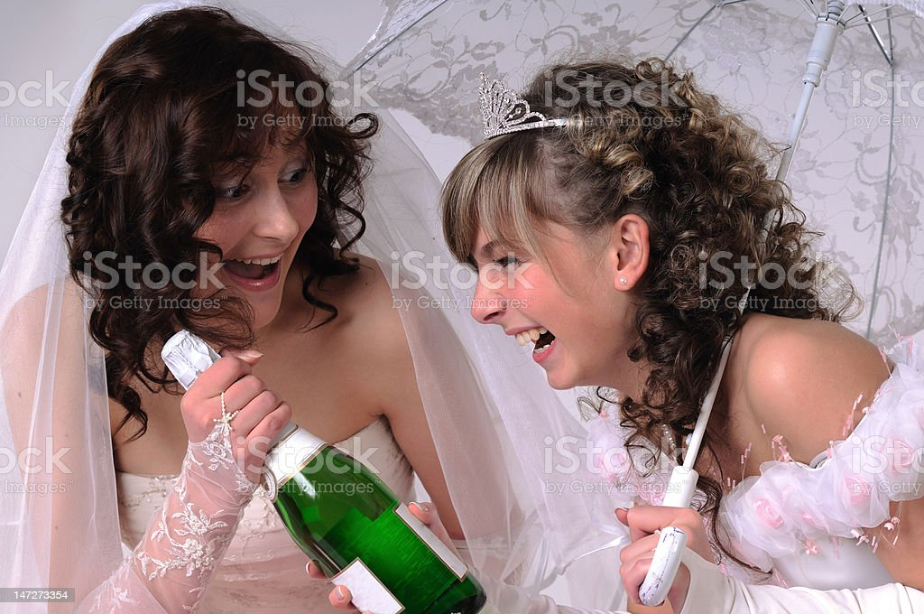 Portrait of the young brides royalty-free stock photo