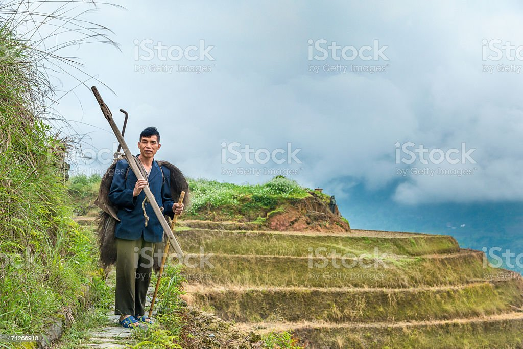 Portrait of traditional Chinese organic rice farmer stock photo