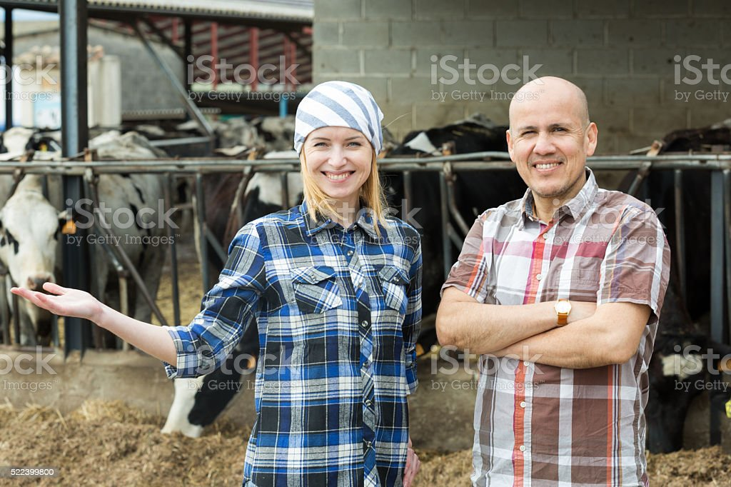 Portrait of two farm workers near cows barn stock photo