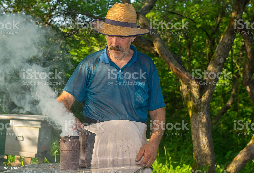 Portrait of Ukrainian bee-keeper with fuming smoker at work place stock photo