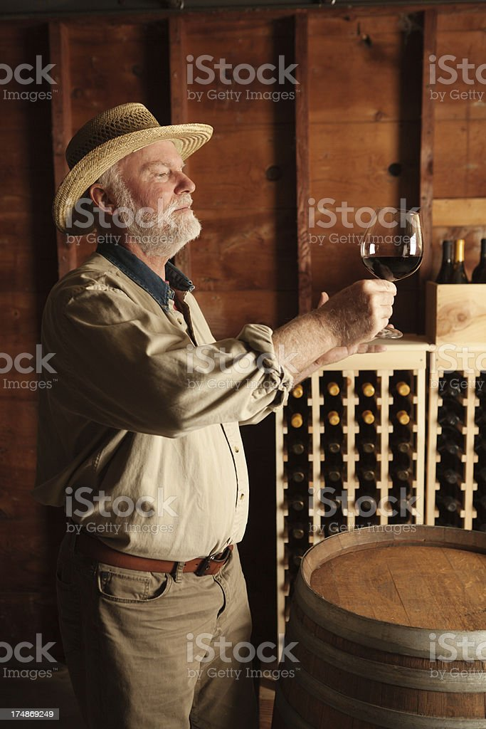 Portrait of Vintner Winemaker Working in the Cellar Vertical royalty-free stock photo