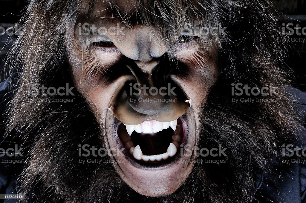 Portrait of werewolf royalty-free stock photo