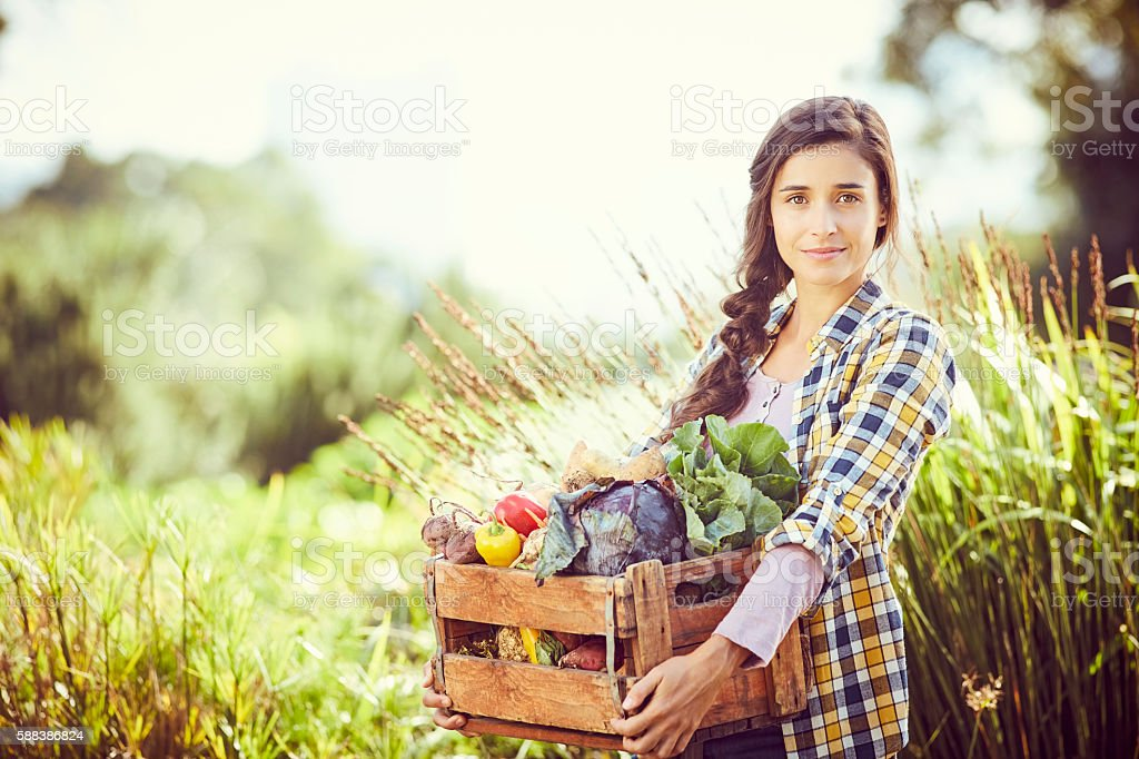 Portrait of woman carrying vegetables in crate at farm stock photo