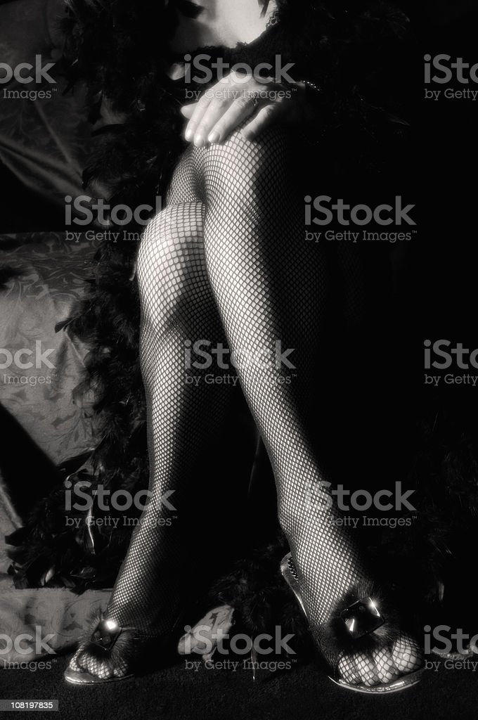 Portrait of Woman's Legs in Fishnet Stockings, Black and White royalty-free stock photo