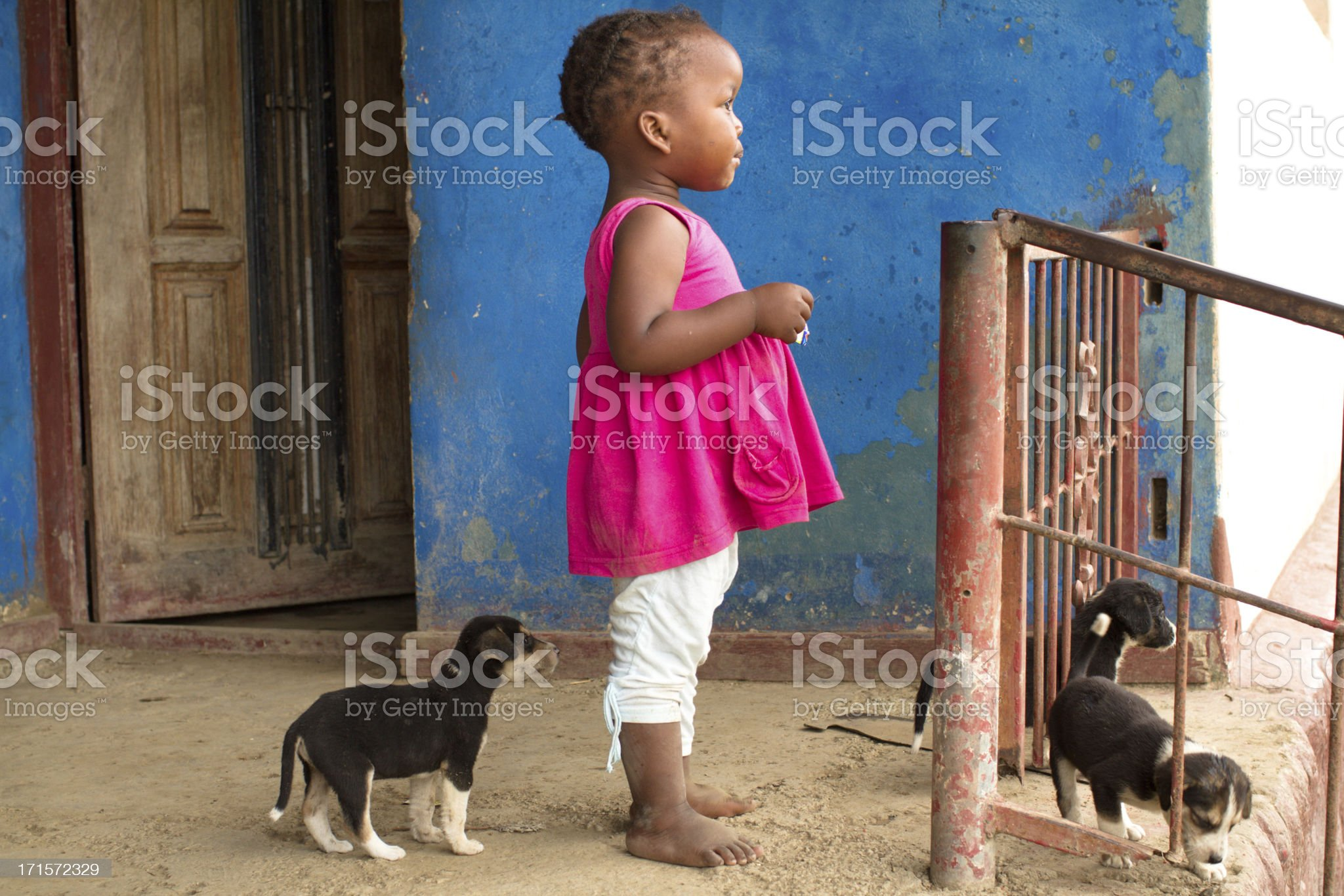 Portrait of Xhosa toddler with a little puppy dog royalty-free stock photo