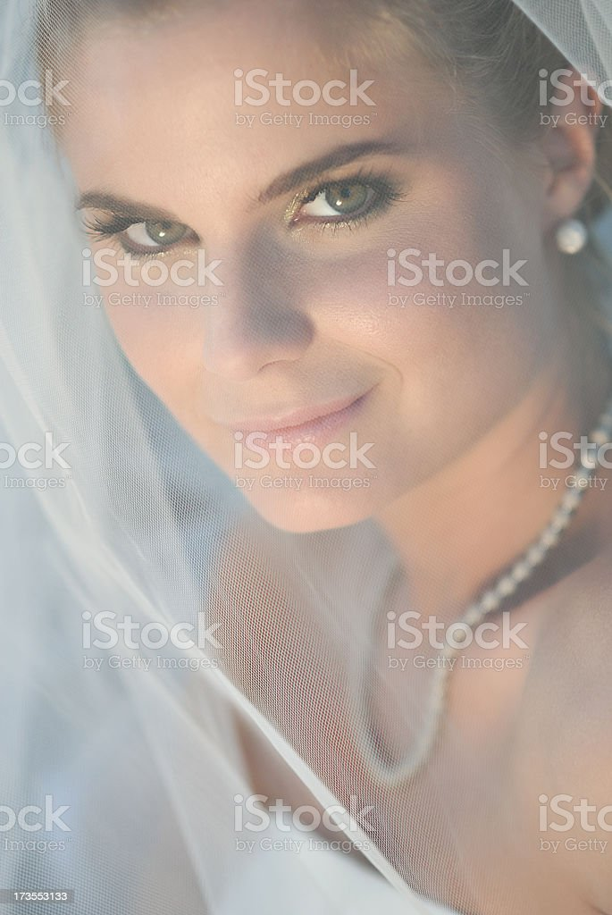 Portrait of Young Bride Wearing Wedding Dress royalty-free stock photo