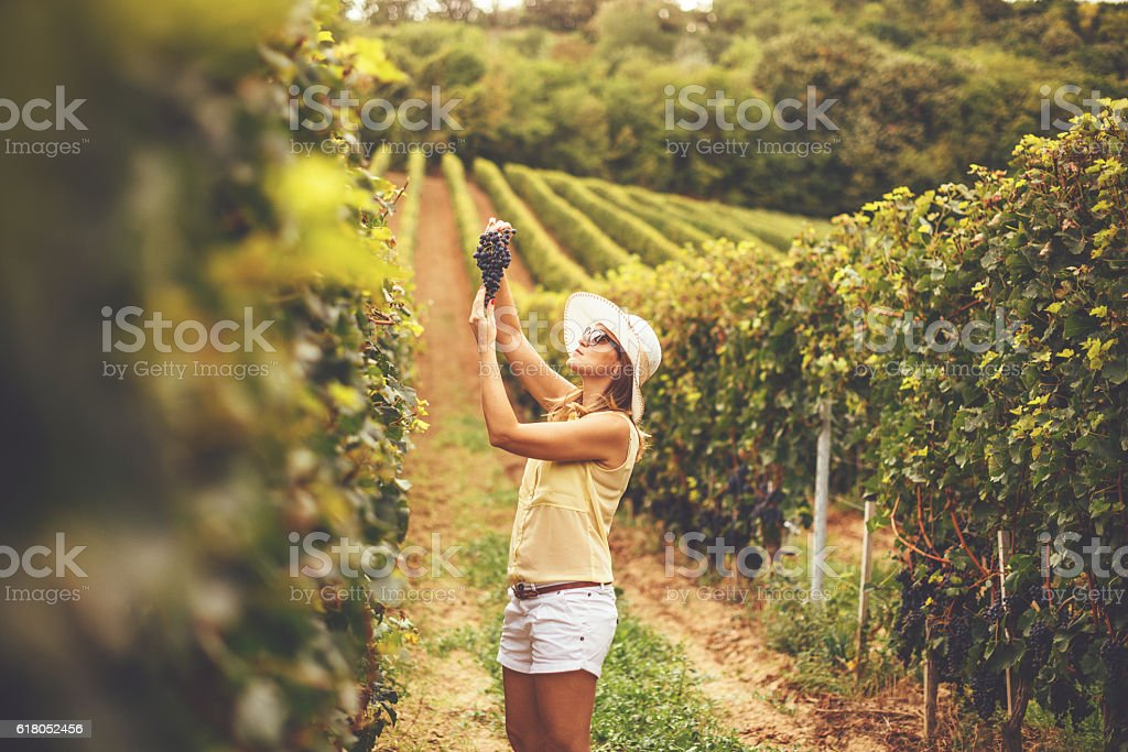 Portrait of young female farmer in vineyard stock photo