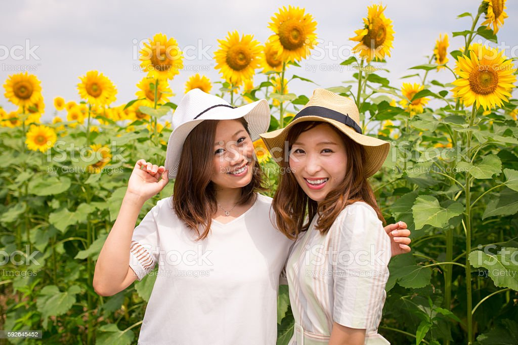 Portrait of young female friends in sunflower field stock photo