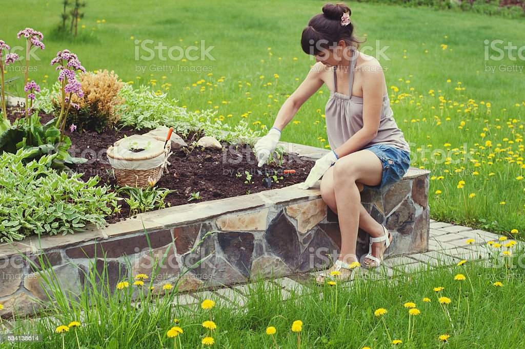 Portrait of young woman lands flower seedling in a garden. stock photo