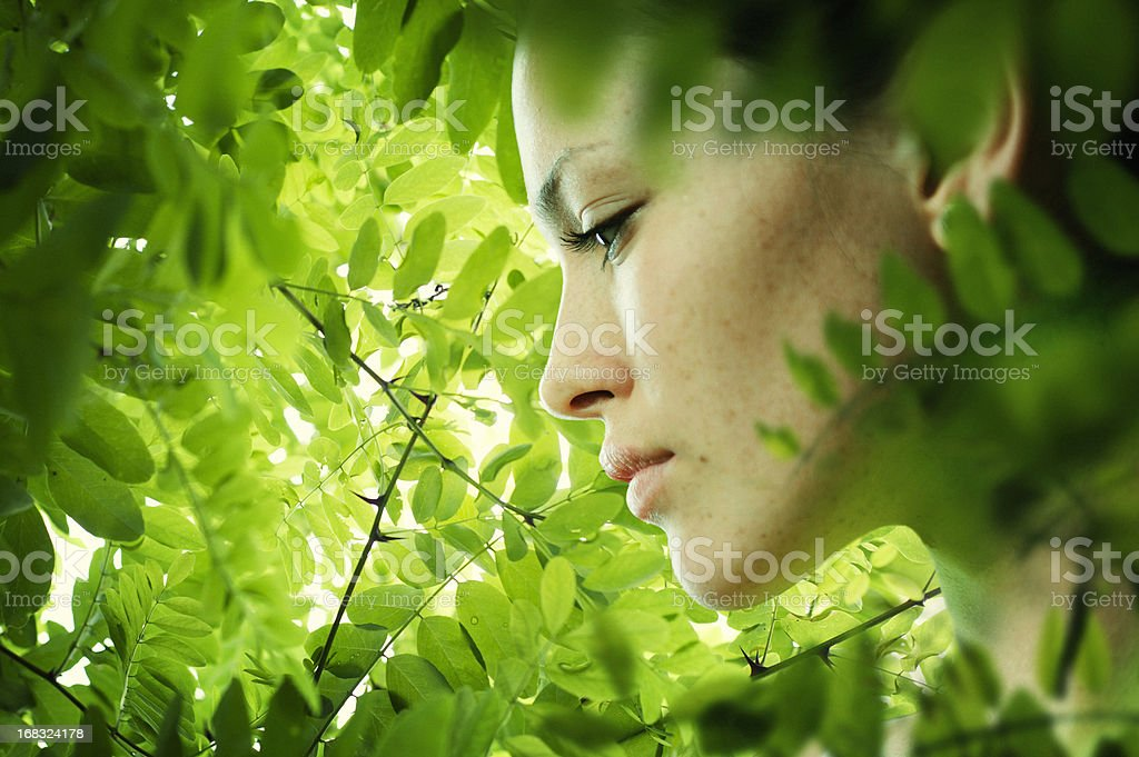 portrait young beautiful women in green leaf stock photo