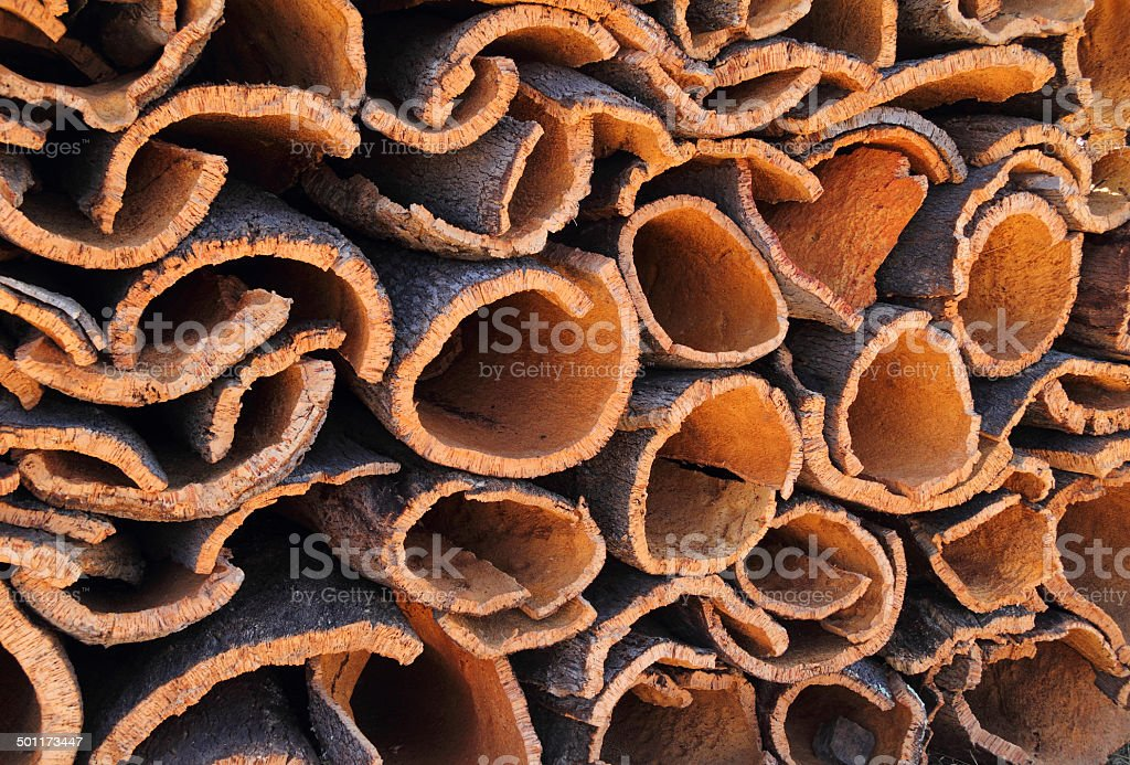 Portugal, Alentejo region, newly cut, cork oak bark stock photo