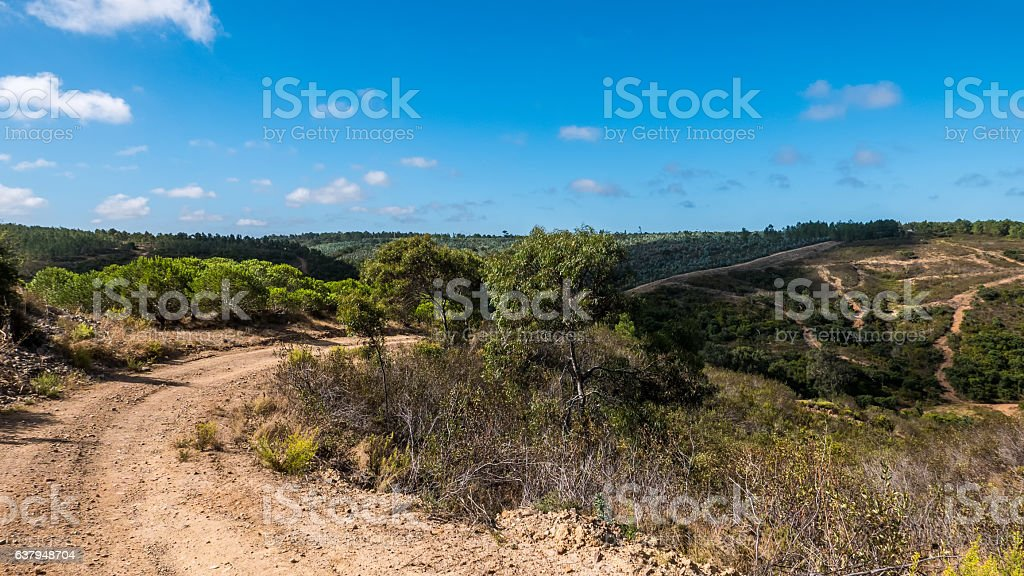 Portugal - Country road stock photo