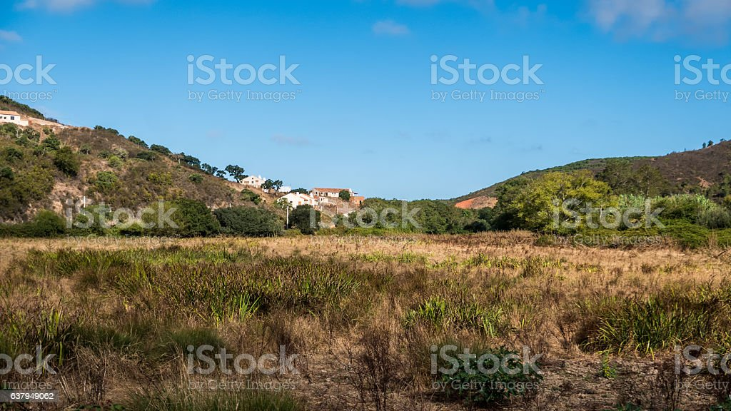 Portugal - Meadow in the country stock photo