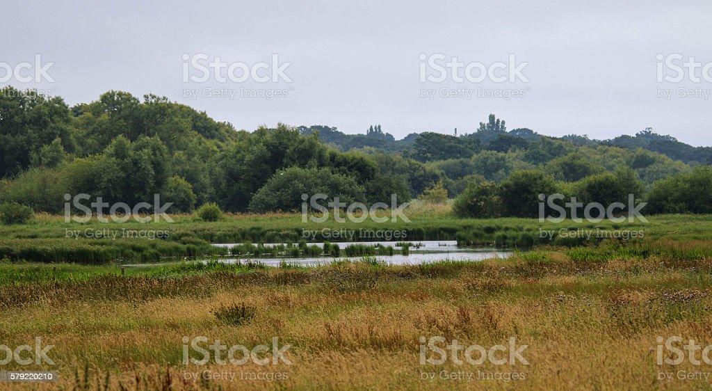 Posbrook Floods stock photo