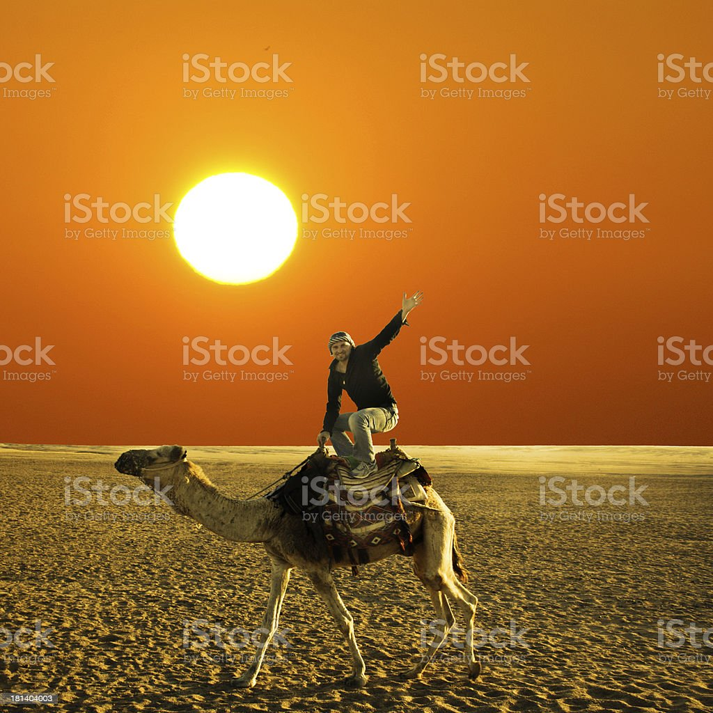 pose on the camel royalty-free stock photo