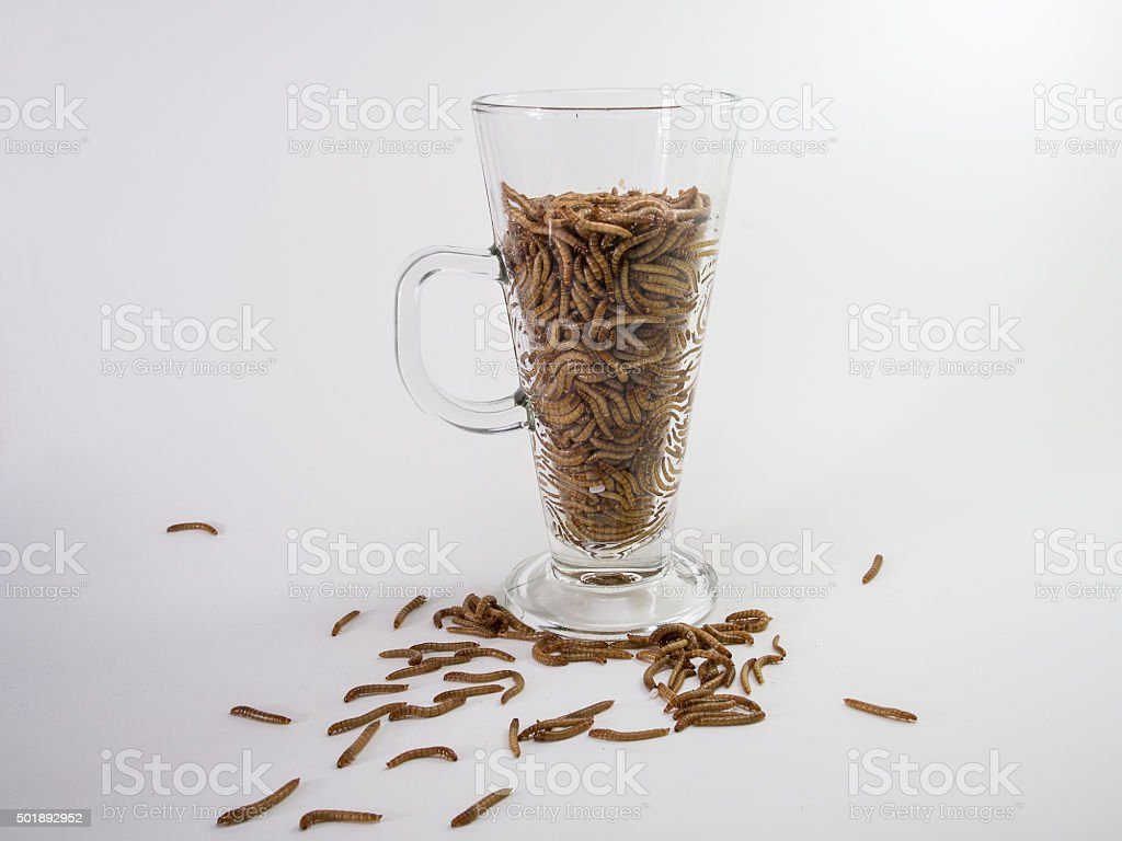 Posion Food or Drink stock photo