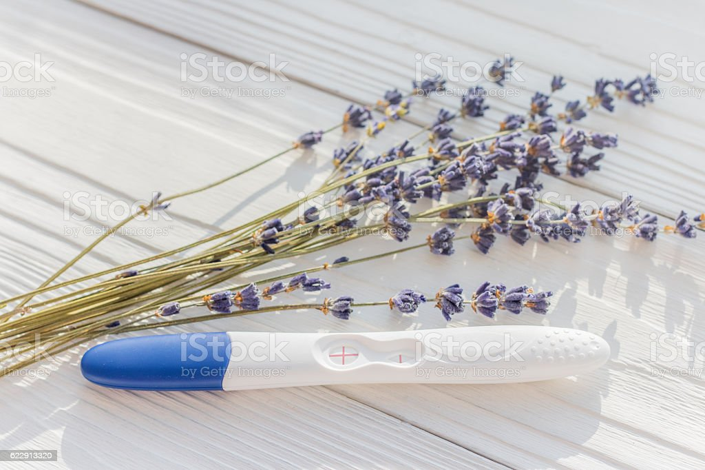 Positive pregnancy test with lavender on wooden background stock photo