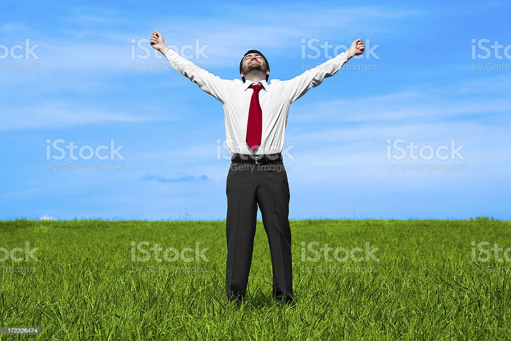 positive success for a business man in the field royalty-free stock photo