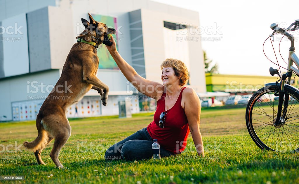 Positive vibes when sharing time with loved dog stock photo