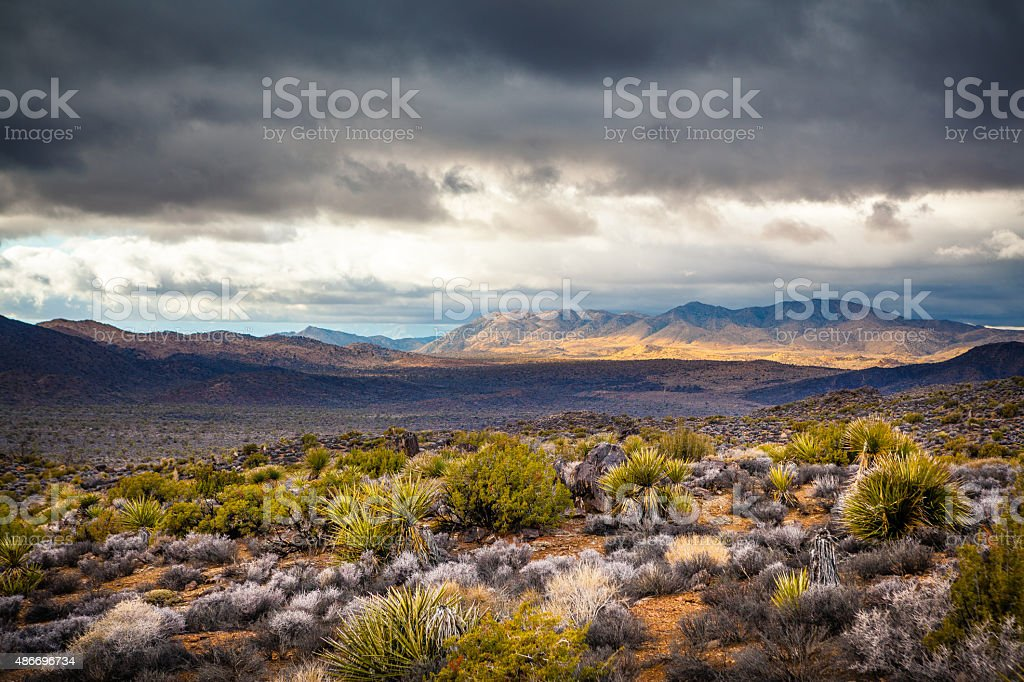 Post Storm Clouds Over Joshua Tree National Park royalty-free stock photo