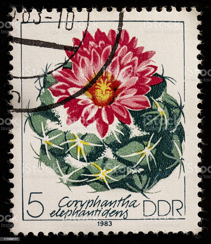 Postage Stamp 1983: Poland - Coryphantha elephantidens stock photo