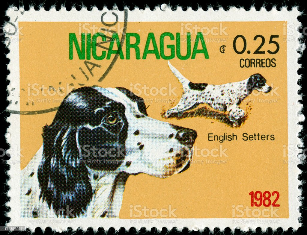 Postage stamp from Nicaragua stock photo