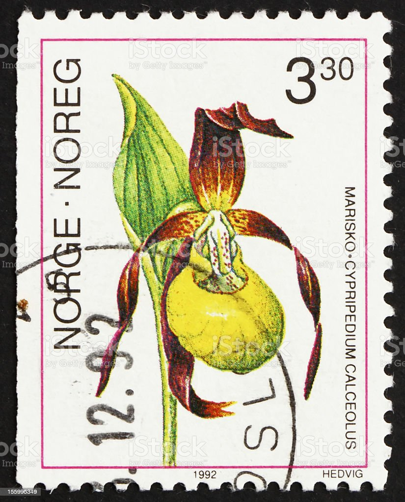 Postage stamp Norway 1992 Lady's- slipper Orchid, Cypripedium stock photo