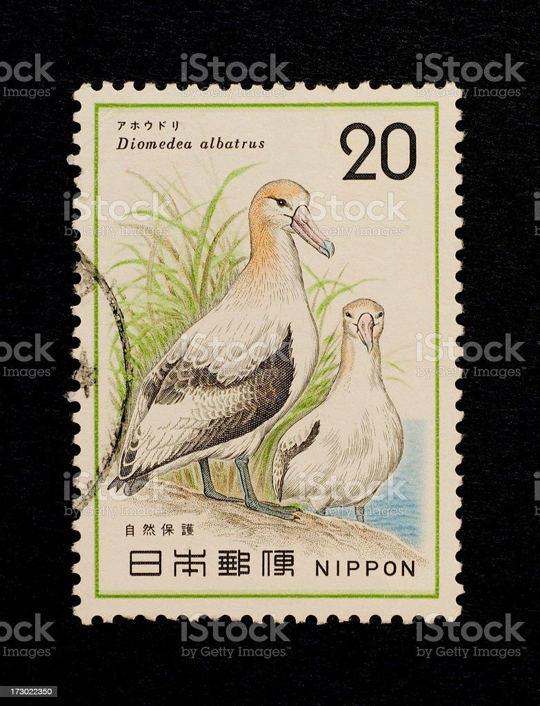 Postage Stamps: Albatrosses (Japan) stock photo