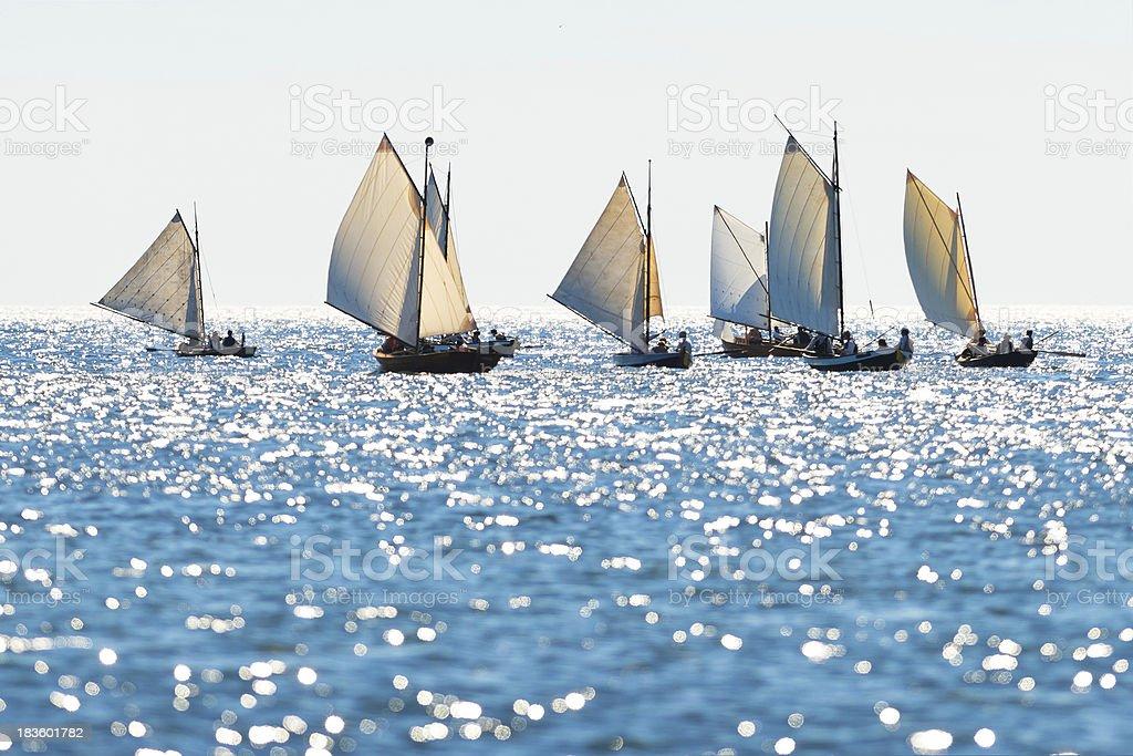 Postal rowing boats royalty-free stock photo