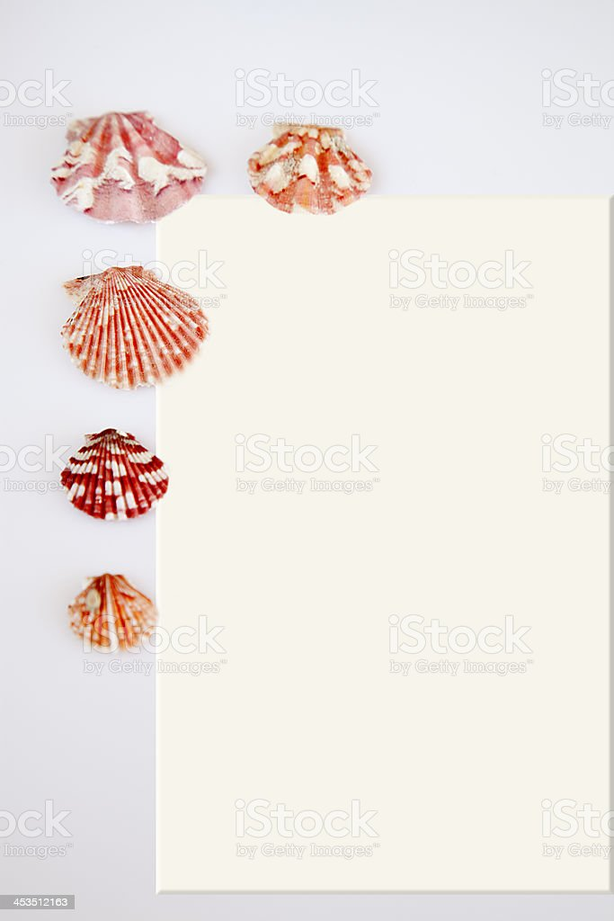 Postcard and shells. royalty-free stock photo