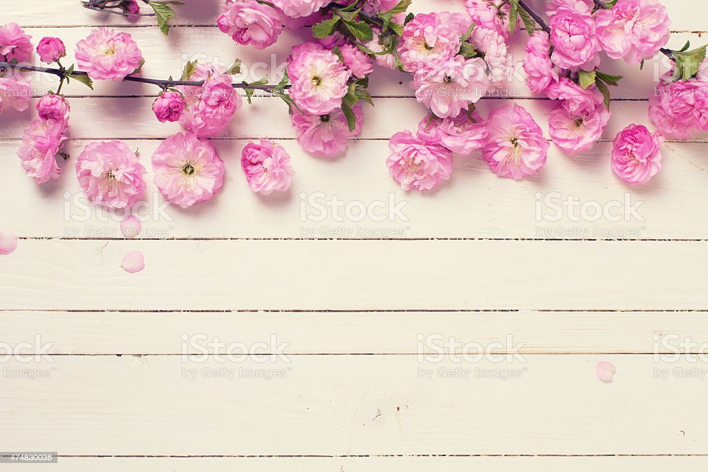 Postcard  with fresh flowers stock photo