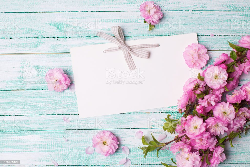 Postcard with pink flowers and empty tag for your text stock photo