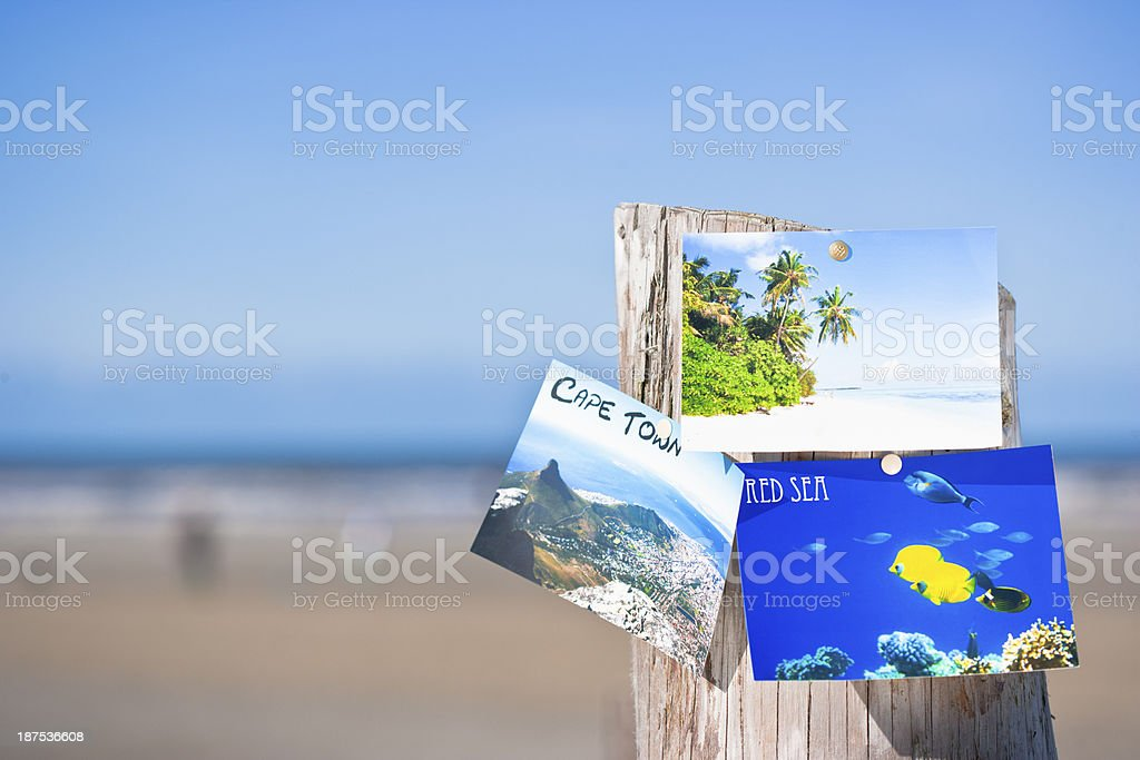 Postcards sticking on wooden stake stock photo