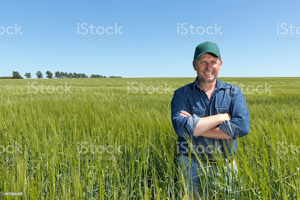Postive Farmer at his Farm in a Wheat Field stock photo