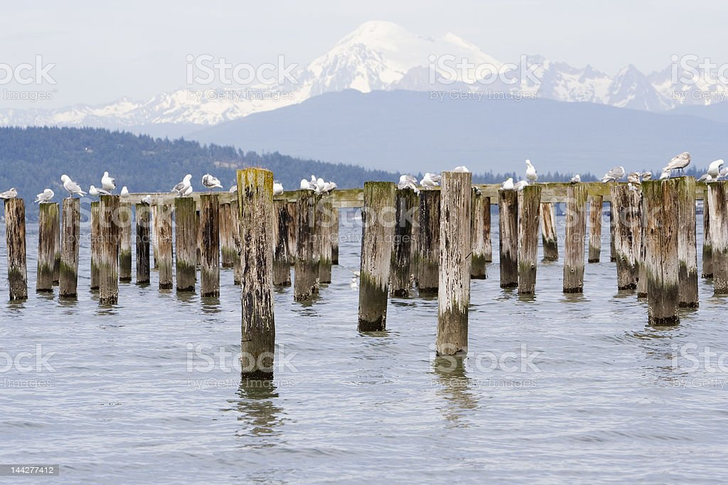 Posts adn Mount Baker royalty-free stock photo