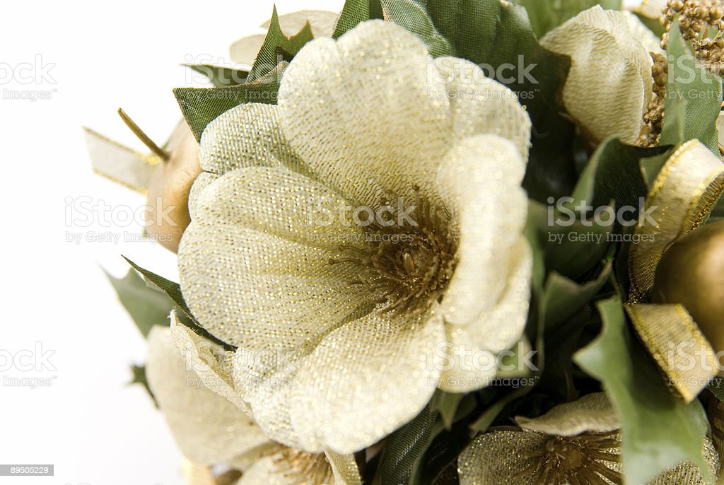 Posy royalty-free stock photo