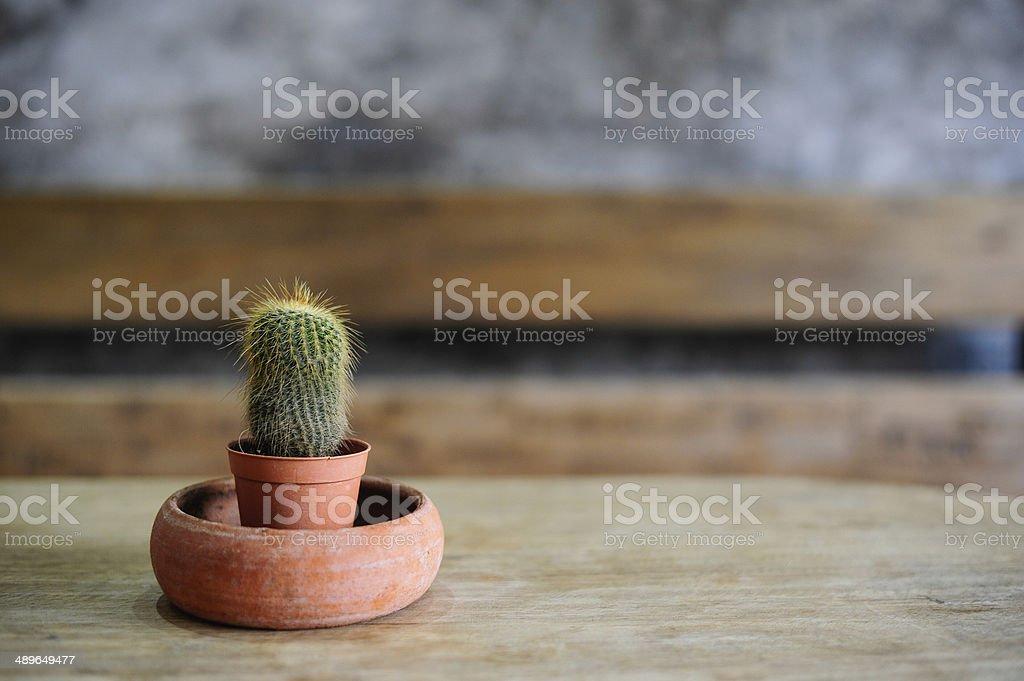 Pot on wooden table stock photo