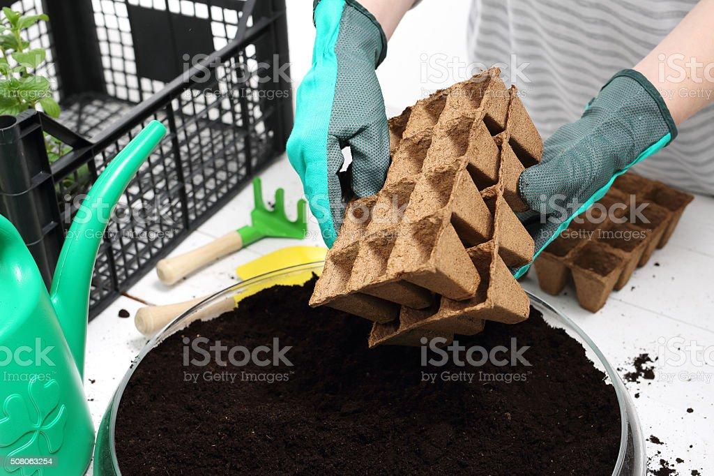 Pot peat, natural crops stock photo