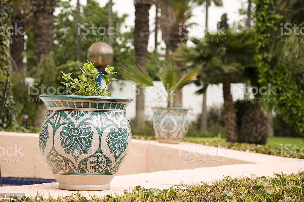 Pot with plant in the Morocco garden royalty-free stock photo