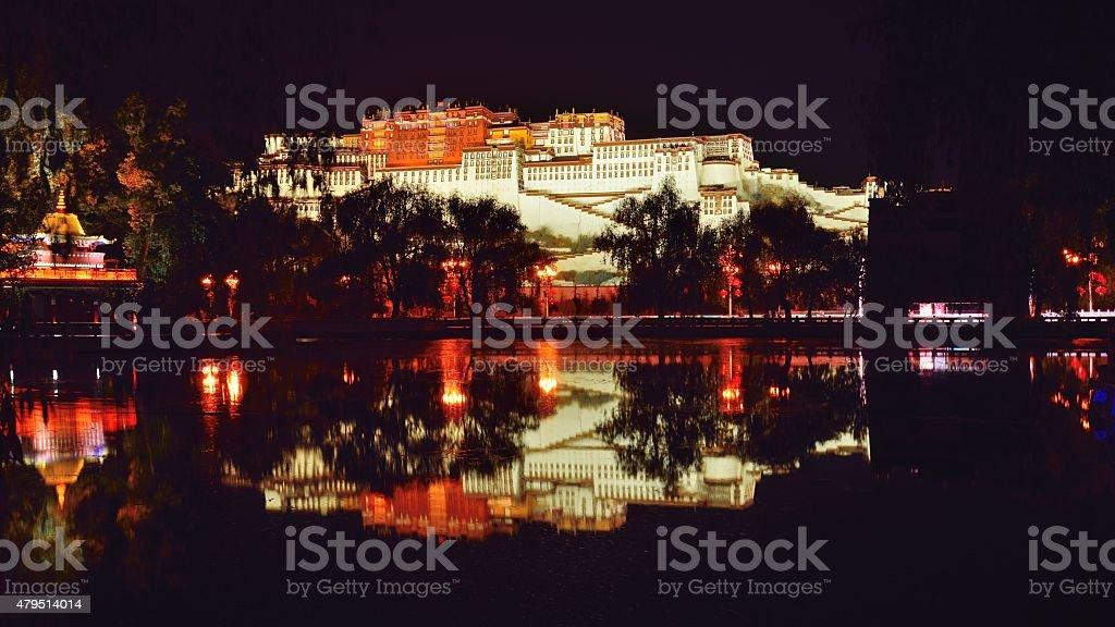 Potala palace at night 04 stock photo