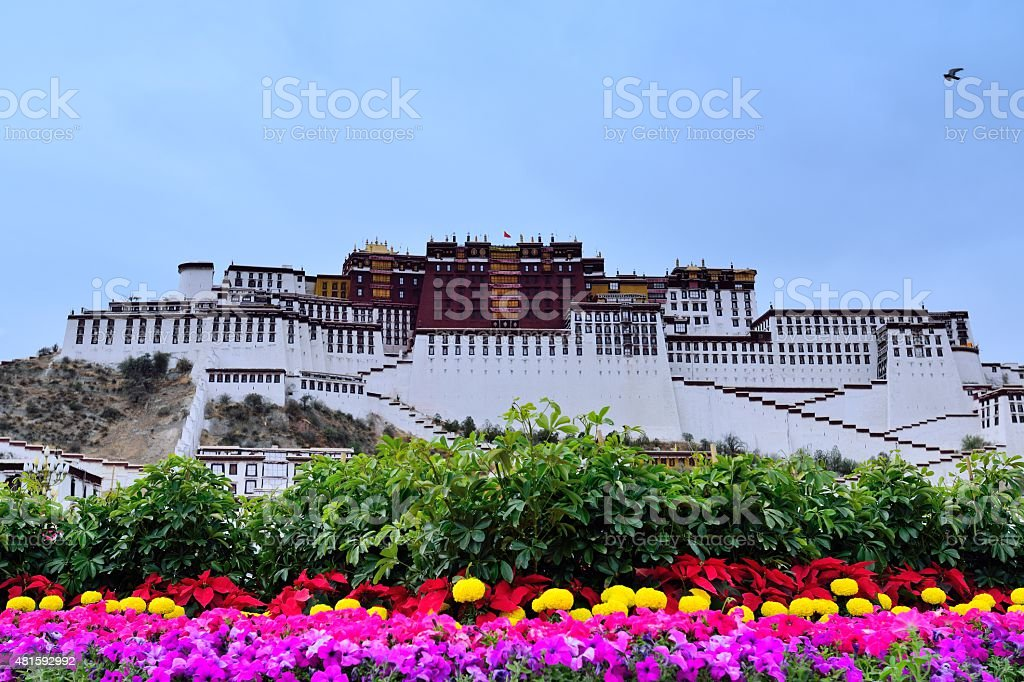 Potala palace in the flowers stock photo