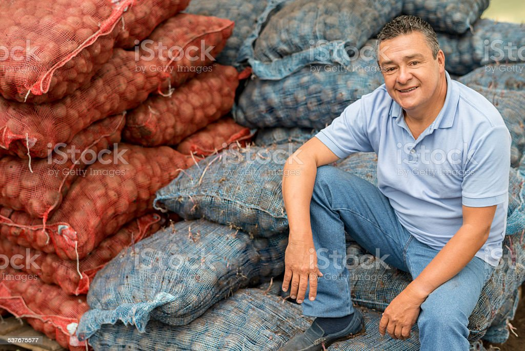 Potato farmer sitting on packages at the farm stock photo